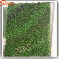 Professional Design Green Wall Vertical Garden