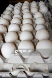 Hatching Duck Eggs