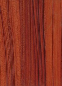 Senovo Teak Decorative Laminates