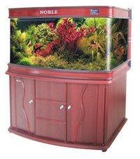 Wooden Aquarium