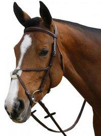Horse Nose Bands