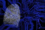 Forensics Expert Services