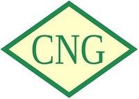 Bio Cng Gas
