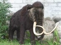 Hansa Extra Large Mammoth Toys