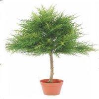 Artificial Cypress Tree