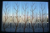 Acid Textured Glass