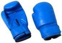 Delux Punching Gloves