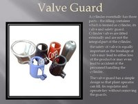 Valve Guard