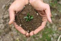 Soil Testing Kit - Mridaparikshak