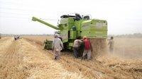 Agri Harvester Combine