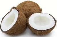 High Quality Coconut