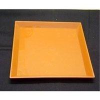 Dinner Plastic Plates