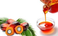 Palm Oil (Refined And Crude)