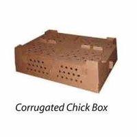 Corrugated Chick Box