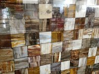 Retro Petrified Wood Slabs