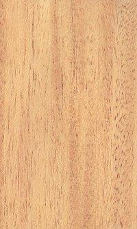 Golden Cedar Natural Veneers