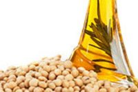 Non GMO Standardized Soya Lecithin