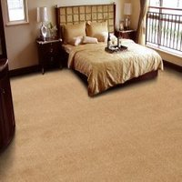 Plain And Design Cut Pile Carpets