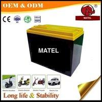 E Ride Automotive Battery - Dry Charge 48v 100ah