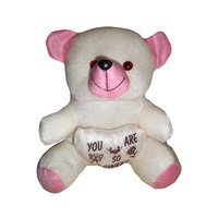 Long Lasting Teddy Bear