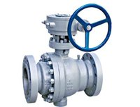 Ball Valve in Taloja