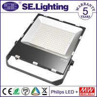 New Ip65 Meanwell Driver Philips Chip Led Flood Light