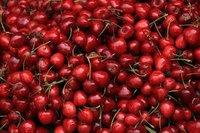 Karunda Cherries