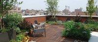 Terrace Garden Decorator Service