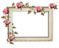 Digital Album Photo Frame