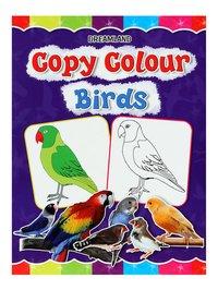 Book on Copy Colour Birds