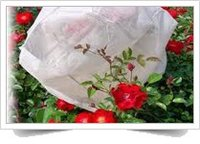 Non Woven Fruit Protection Cover