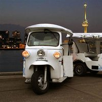 Auto Electric Rickshaw
