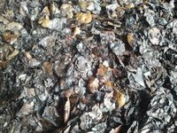 Cashew Nut Shell Extraction