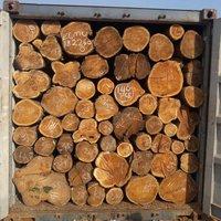 Top Quality Sudan Teak Wood