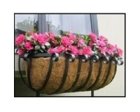 Coco Hanging Baskets