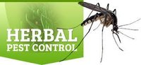 Herbal House Pest Control Service