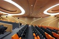Auditorium Wooden False Ceiling