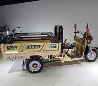 Triciclo Electrico Adulto Para Carga 1000kg