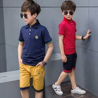 Boy Kids Shorts With T-Shirts