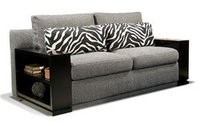 Two Sitter Stylish Sofa