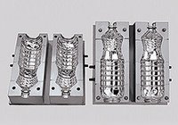 Pet Injection Mold