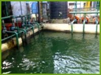 Sludge Thickening And Dewatering System