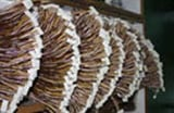 Large Volumes Of Wire Harnesses China