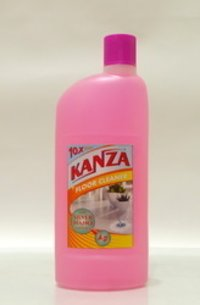 Silver Nano Technology Disinfectant Floor Cleaner