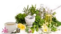 Herbal Product Testing Laboratory Services
