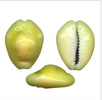 Yellow Cowrie Shells