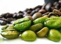 Premium Quality Green Coffee Bean
