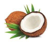 Coconut Milk Protein Powder