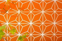 Sandblasted And Back Orange Painted - Positive