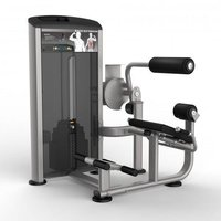 Body Building & Strengthening Back Extension Machine